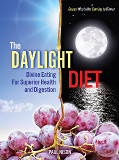 The Daylight Diet: Eating When it Makes Sense
