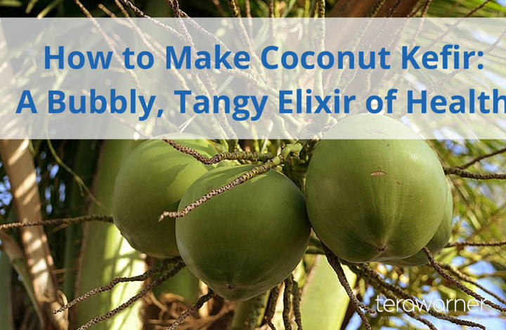How to Make Coconut Kefir: A Bubbly, Tangy, Probiotic Elixir of Health!