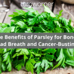 The Benefits of Parsley for Bones, Bad Breath & Cancer-Busting (And 4 Parsley-Powered Green Smoothie Recipes)
