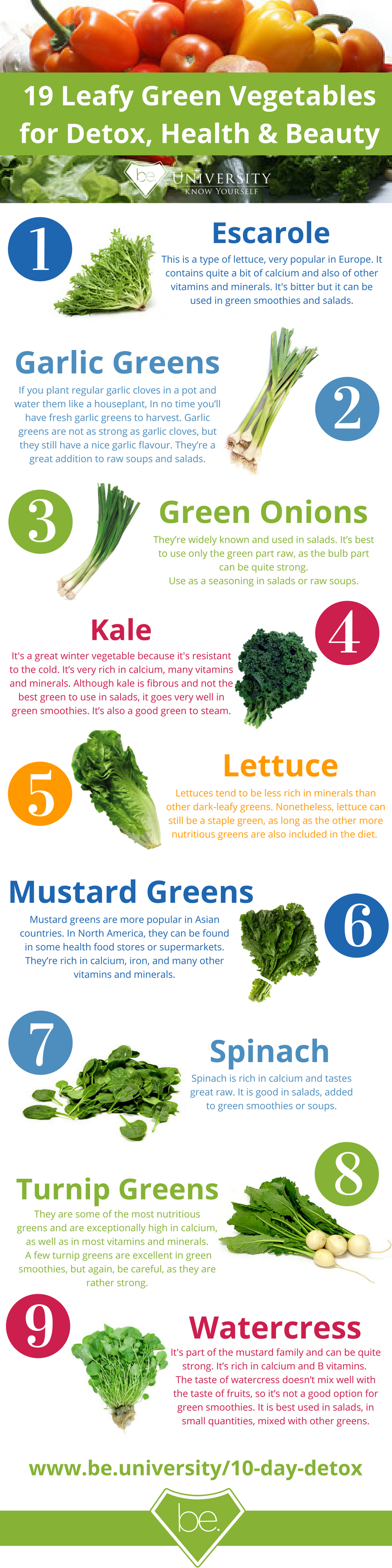 Vegetables Contain Calcium 19 leafy green vegetables for detox health and beauty diet detox leafy greens leafy green vegetables natural detox workwithnaturefo