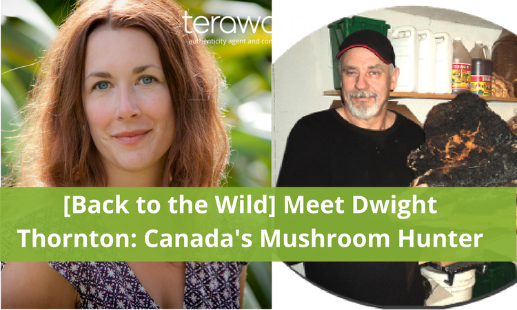 dwight thornton, mushroom hunting, wild edibles, Canada, Alison Ramsay