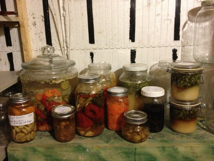 healthy homesteader course with Frank Giglio