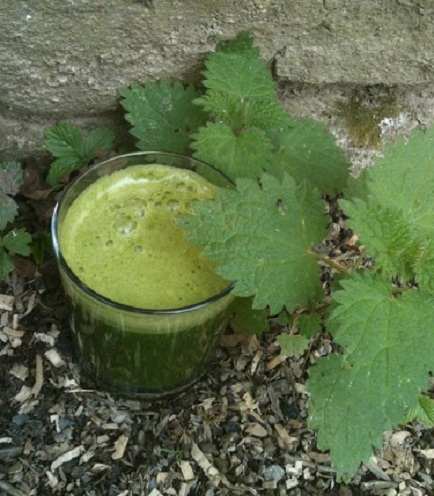 Wild Edibles Recipe: An Autumn Radiance Nettle Elixir To Give Your Skin An Extra Glow