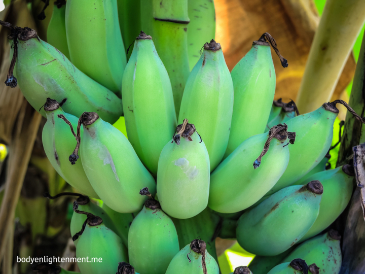 bananas for health and happiness