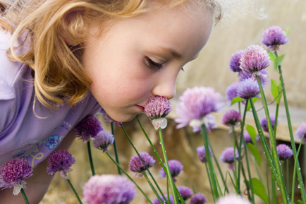 Sniffling and Sneezing and Wheezing… Oh My! Healthy Tips to Banish the Spring Sniffles