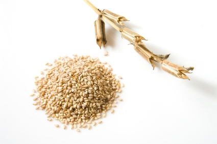 Raw Health Benefits of Sesame Seeds: Your Raw Food Source of Calcium and Magnesium