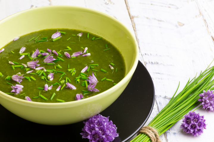 raw recipes blended soups and salads