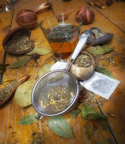 herbal medicine, natural first aid kit, family herbs for healing, medicinal herbs, uses of herbs, harvesting herbal medicine