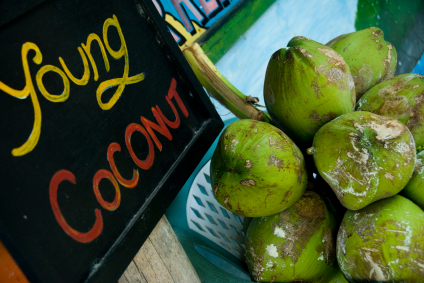 Raw Recipes for Young Coconut Water and Coconut Milk